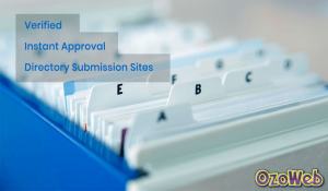 Instant approval directory submission